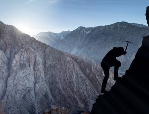 Gagner sur le forex : 7 conseils pour réussir