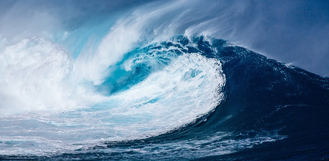 la théorie des vagues d'elliott